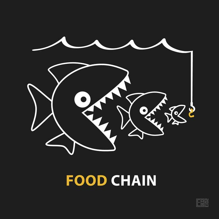 The Food Chain | Poster | Square