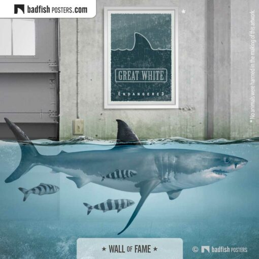 Great White | Endangered | Graphic Poster | Gallery Image | © BadFishPosters.com