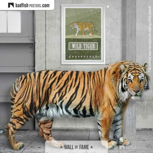 Wild Tiger | Endangered | Graphic Poster | Gallery Image | © BadFishPosters.com